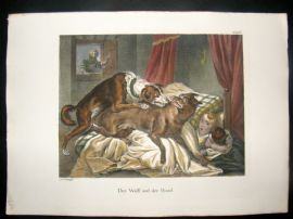 Schinz 1845 Antique Hand Col Print. Wolf & The Hound, Child 16